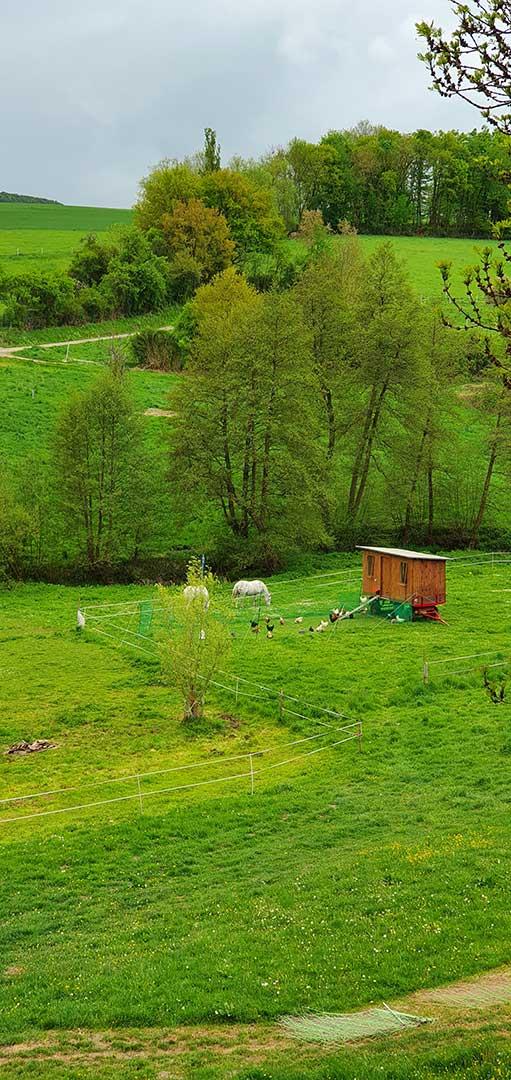 Ransweiler Wiesen mit Blick nach Süden